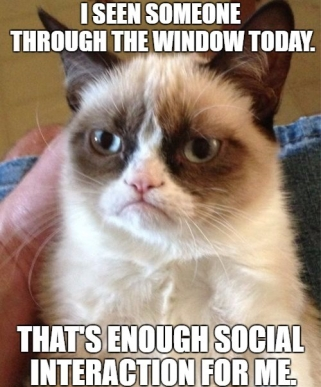 Grumpy Cat Interaction